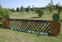 XC (Cross Country) Fences / Examples of Jumps and Fences  / by Vicky Tait