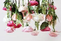DIY WEDDING / by design by dainty