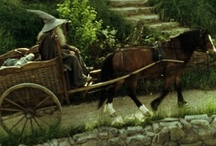 Hobbits and Elves