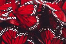 Rød / Rojo