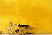 Yellow......yummmm....