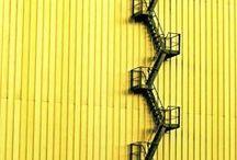 Yellow / by Melissa Miranda