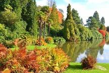 Great British Gardens / The best of British gardens