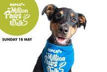 RSPCA Million Paws Walk