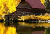 BARNS and FARMS / Beautiful photographs of some of my favorite things.
