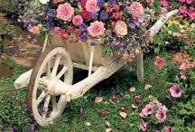 Charming gardens