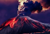 Easy Branches Travel News