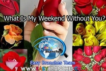 All About Easy Branches