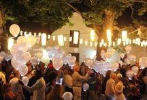Spier | Festival of White Lights