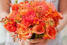 Orange & Tangerine Weddings / Wedding flowers, bouquets, boutonnieres, centerpiece, receptions in shades of oranges, tangerine. Wedding Florist & Event Design. Sonoma / Napa Wine Country Weddings & Events. Destination Weddings. LGBT Friendly. www.fleursfrance.com