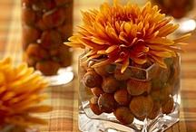 Thanksgiving! / by Blossom Snodgrass