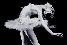 Dance is my Love  / by Kara Lynn