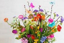 CHWV ♥ Colour Pop Weddings / Rainbow Wedding Theme