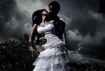 Weddings and Engagement Photography by Zorz Studios