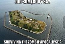 Zombies Survival - Doomsday prepping - SHTF ready / It s so incredible, the number of people who create things around this topic. So I decided to make a board, that will represent how far people are thinking about it, and how right they might be on some points about the way we lived today.