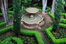 Garden Gawking / Visually striking garden design and plants
