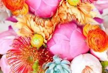 Feminine Brights / by Country House Wedding Venues