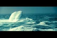 Movies — Documentaries / Watch the trailers! / by Miriam Langsam
