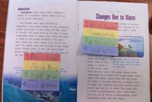 Reading Nonfiction Text / Anchor charts, tools, and lessons for teaching students to navigate informational and expository text. / by Buzzing with Ms. B