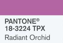 pantone radiant orchid 2014 / #pantone #radiantorchid #2014 #color