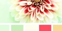Color Inspiration / Everyone needs a little color in their life. What is your favorite?