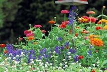 Gardens / Gardens that I like. / by Robert Potillo