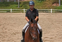 Video Topics on EquestrianCoach.com / by Equestrian Coach