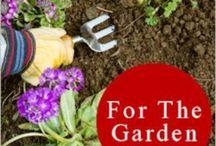 Garden Tips/Tricks / by Laris Sagastume