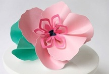 Paper Crafts / by Lifestyle Crafts