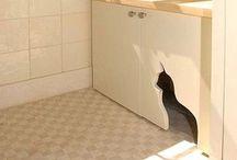 Future house stuff ! / Future house stuff ! / by Miss evil kitty/GabbieA