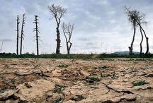 canvi climatic a Catalunya