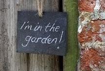 Shhhhh My Secret Garden / Favorite retreats / by Brenda Mullett