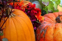 Autumn Bliss / Crisp and cool...my ultimate favorite time of the year!!!   / by Brenda Mullett
