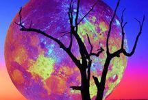 Super Moon, May 5, 2012 / by Marilyn Vanderpool