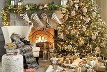 HOLIDAY | Christmas / CHRISTMAS!