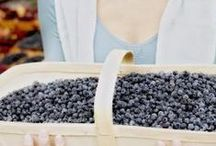 WILD - Eat Healthy, Be Healthy / Read about the MANY health benefits in WILD blueberries.  (And they taste better too!)