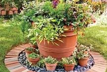 Gardening/ Container