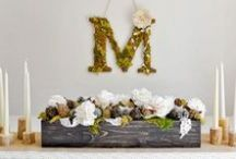 Wedding Board / by Two Branching Out