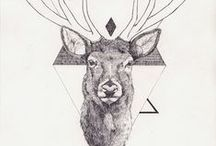 Identity Design. / by Maryn Sommerfeldt