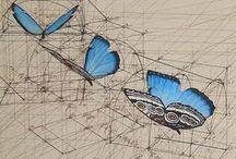 Illustrations / by Elizabeth McConchie