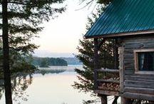 C A B I N / : Dream Cabin :