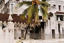 Zanzibar 17