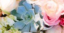 Venues: Pecan Springs / Mint and Blush Wedding at Pecan Springs Ranch, Austin. Floral design by Flora Fetish. Photography by Al Gawlik #florafetish #pecanspringswedding #weddingaislebox #algawlik