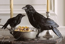 Crows!! / by Laura Richards