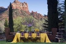 Outdoor Wedding Inspiration / by Carol Kent