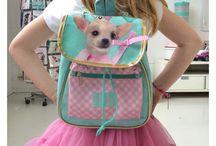 Studio Pets Products