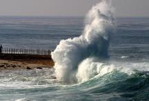 San Diego, California  / by Justmarvelousme