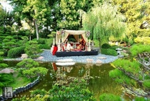 Garden Settings / by Carol Kent