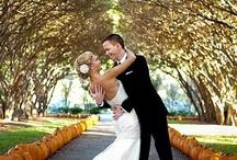Fall Wedding Inspiration / by Carol Kent