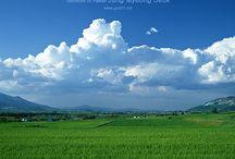 Cloud(雲)